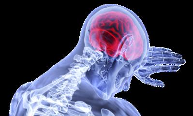 Massage for the Brain | Massage Therapy | Heaven Sent Massage of Ellijay | Ellijay Georgia (GA) 30540