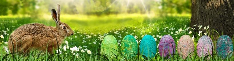 Spring Header Image