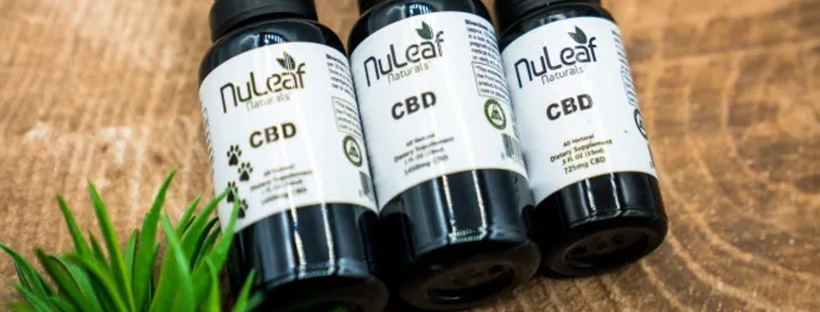 NuLeaf Naturals Organic Full Spectrum CBD Oil | Massage Therapy | Therapeutic & Relaxation Massage | Heaven Sent Massage of Ellijay | Ellijay GA